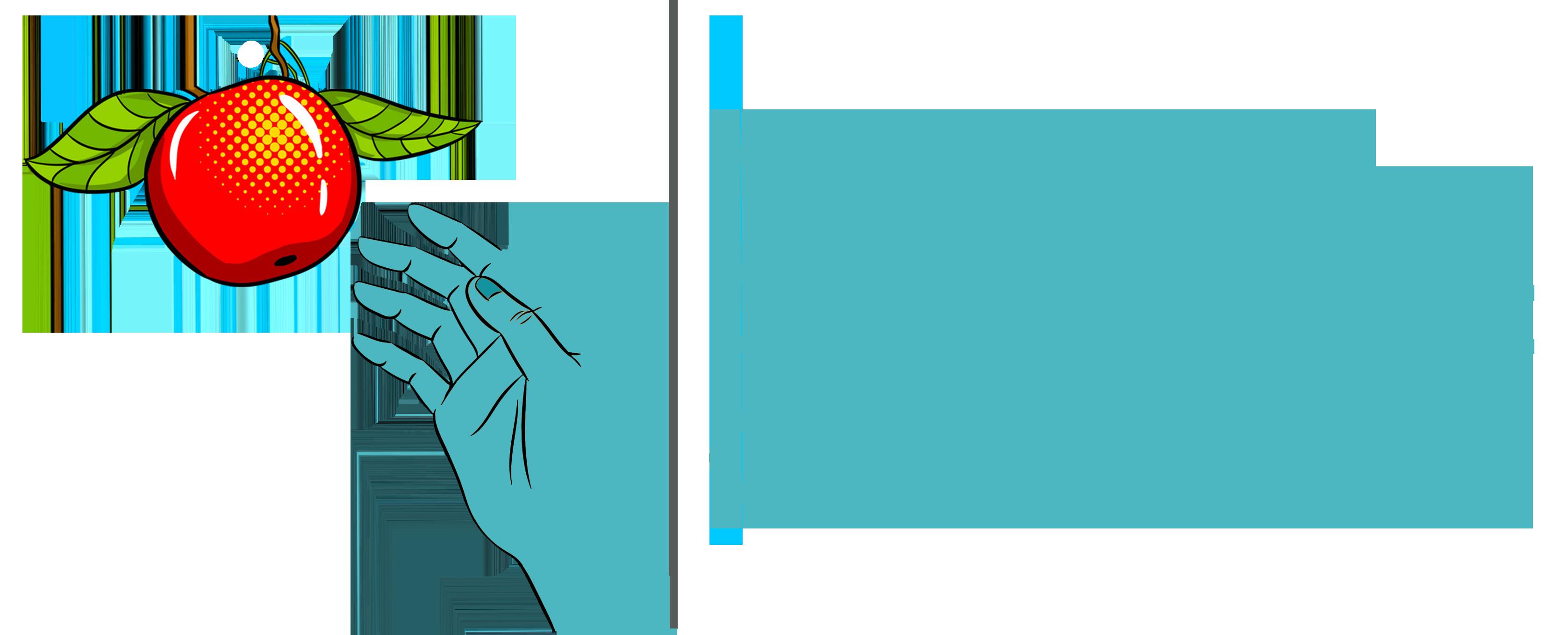 Hand Up Development Organization